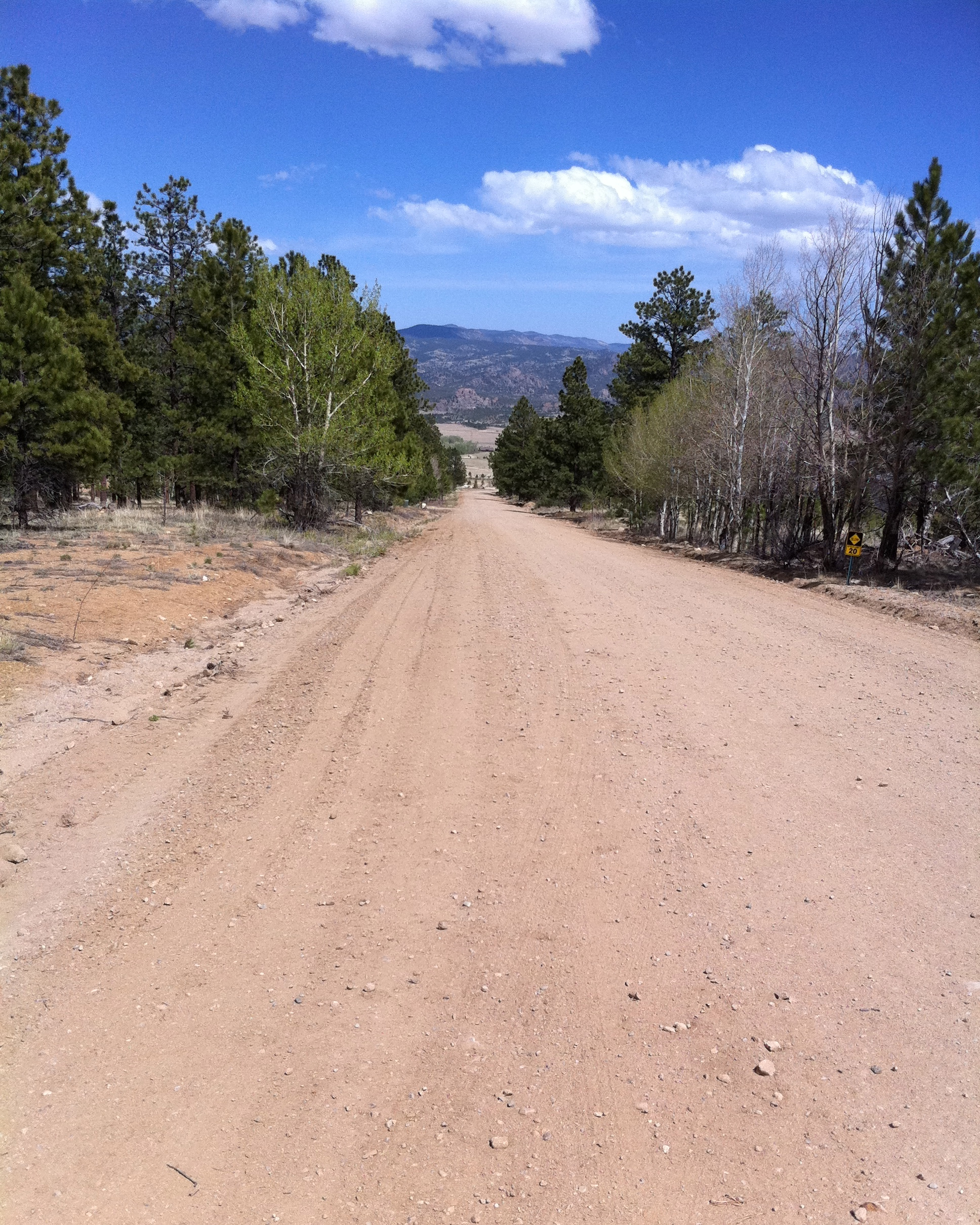 This is a look down the dirt road. We walked up the road.